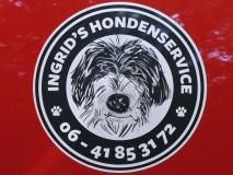 IHS Logo Op De Bus